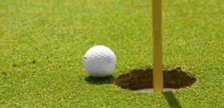 images/golf_2.1.jpg') ?>